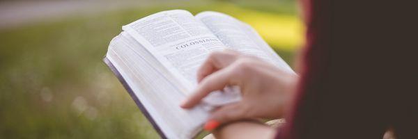 Literatur und Lesungen